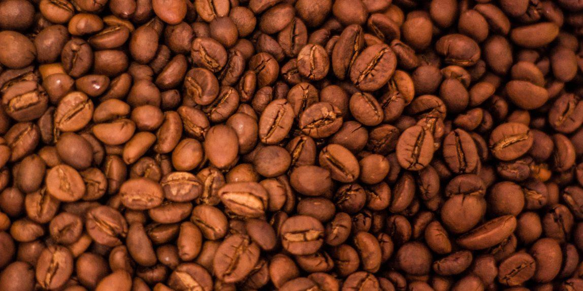biji kopi pilihan