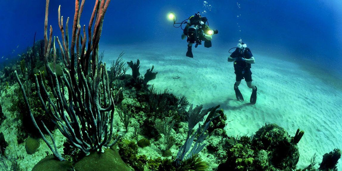 spot scuba diving taman laut